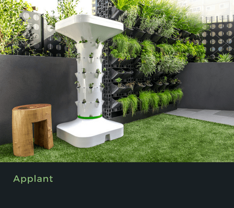 shapeprototype_applant
